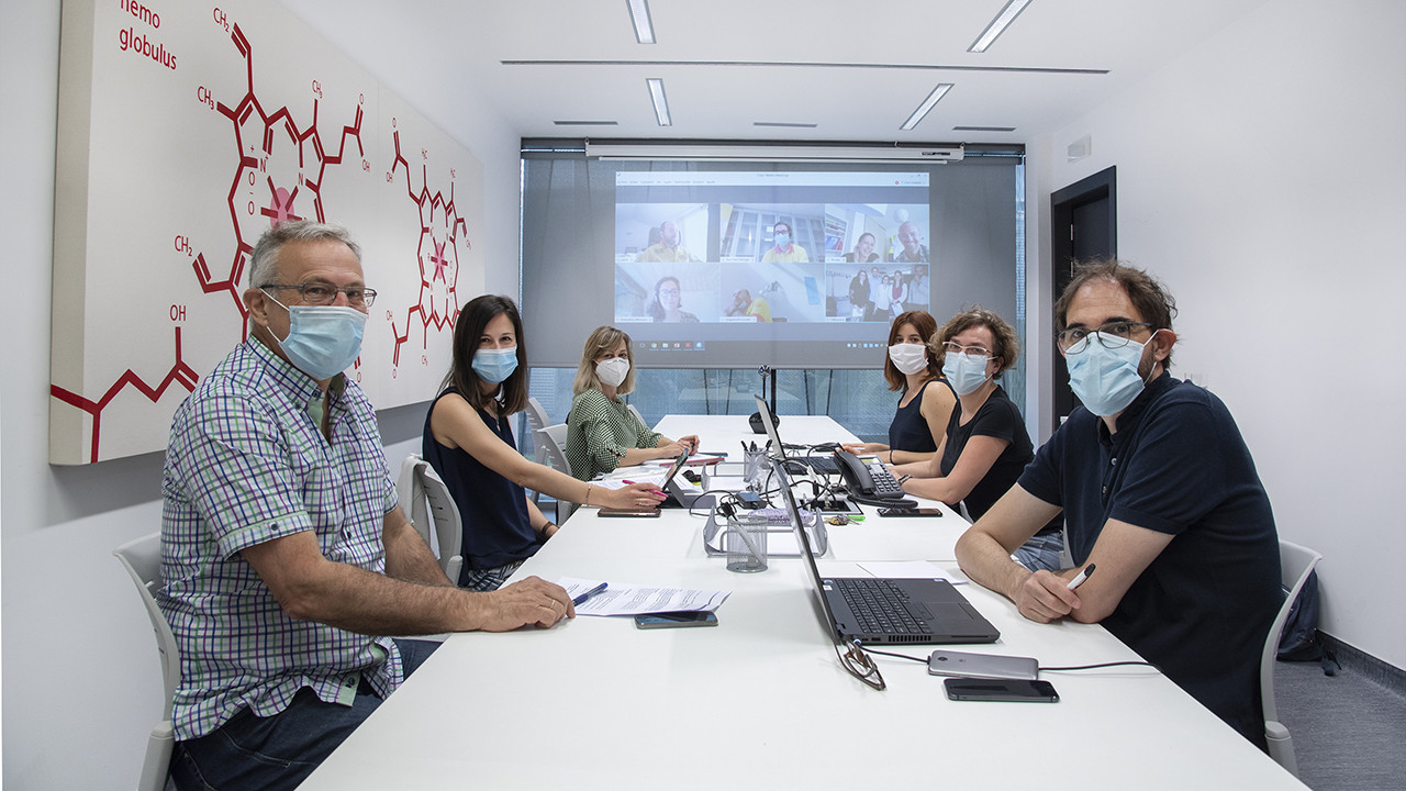 Navarre participates in European network to improve emergency and catastrophic health care in the Pyrenees