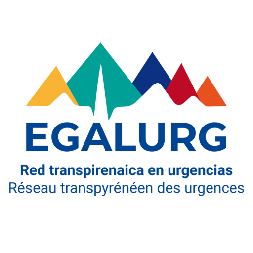 Latest advances in the EGALURG project: European cooperation network to improve health care in isolated communities, emergencies and disasters on both sides of the Pyrenees